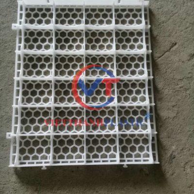 Sàn nhựa nuôi vịt 50×60 cm mẫu mới